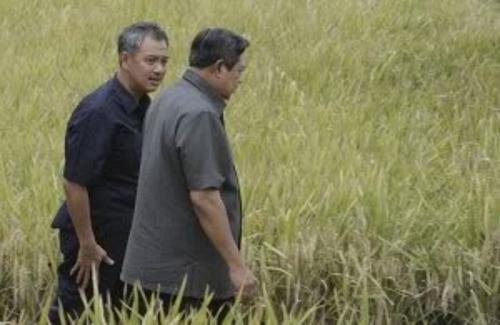 Pengusaha terkenal pemilik grup Artha Graha, Tomy Winata, sedang berbincang akrab dengan Presiden Susilo Bambang Yudhoyono dalam acara panen padi bersama