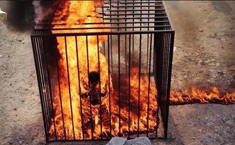 Pilot Yordania, Muath al-Kaseasbeh Saat  Dibakar ISIS - Foto: blitzquotidiano